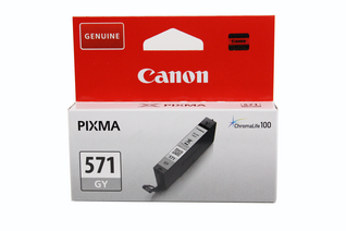 Canon Original - Tinte grau -  0389C001