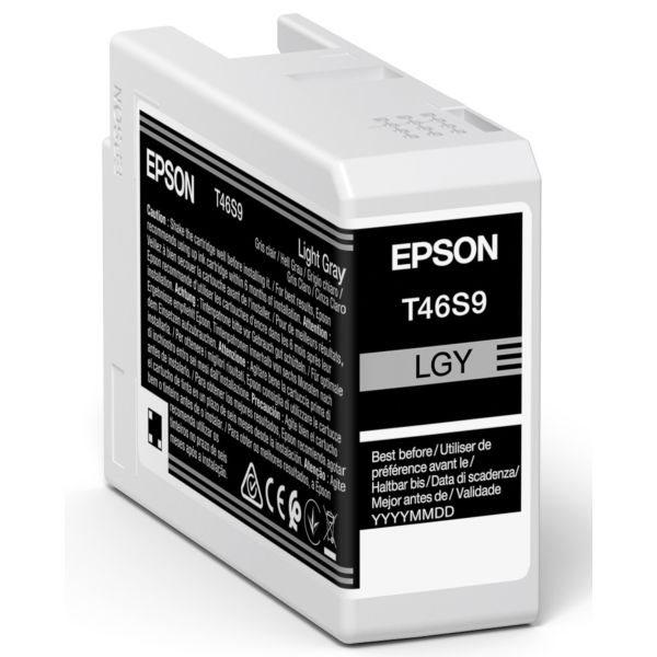 Epson Original Tinte Light Grau T46S9 - C13T46S900