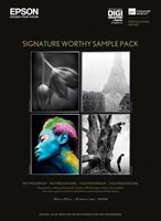 Signature Worthy-Musterpackung - 7107508