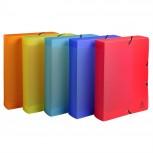 Archivbox aus PP 800µ, Rücken 60mm, 25x33cm für DIN A4 - Linicolor