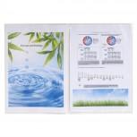Packung mit 10 Dokumentenschutzhüllen 2-teilig aus PP 120µ, für Format DIN A4