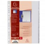 Register mit Beschriftungsfeld aus PP 130µ mit 31 Positionen, für Format DIN A4, Taben 1-31